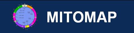Mitomap